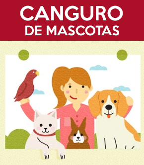 PetSitting en Madrid